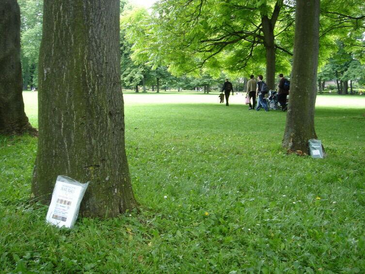 Книга у дерева