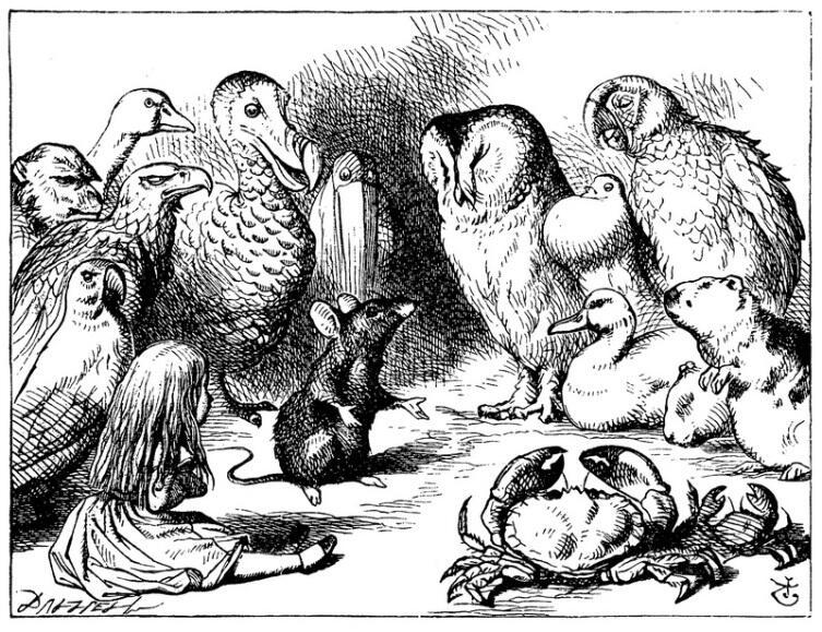 Мышь читает «сухую» лекцию. Иллюстрация Джона Тенниела из«Алисы в Стране чудес»