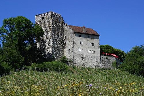 Замок Габсбург. Современный вид
