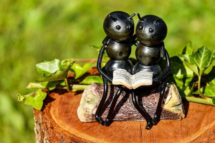 Как люди пытались помириться с насекомыми?