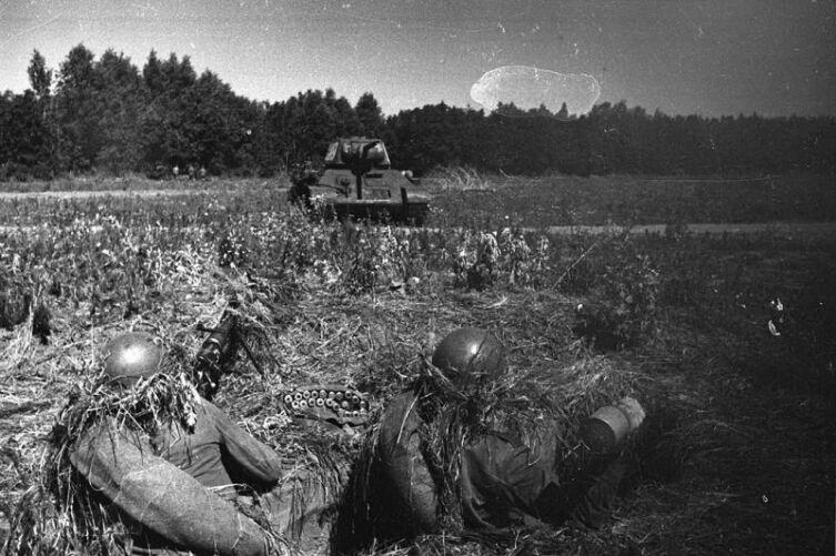 Боевая подготовка советских войск: обкатка танком расчета противотанкового ружья. Курская дуга