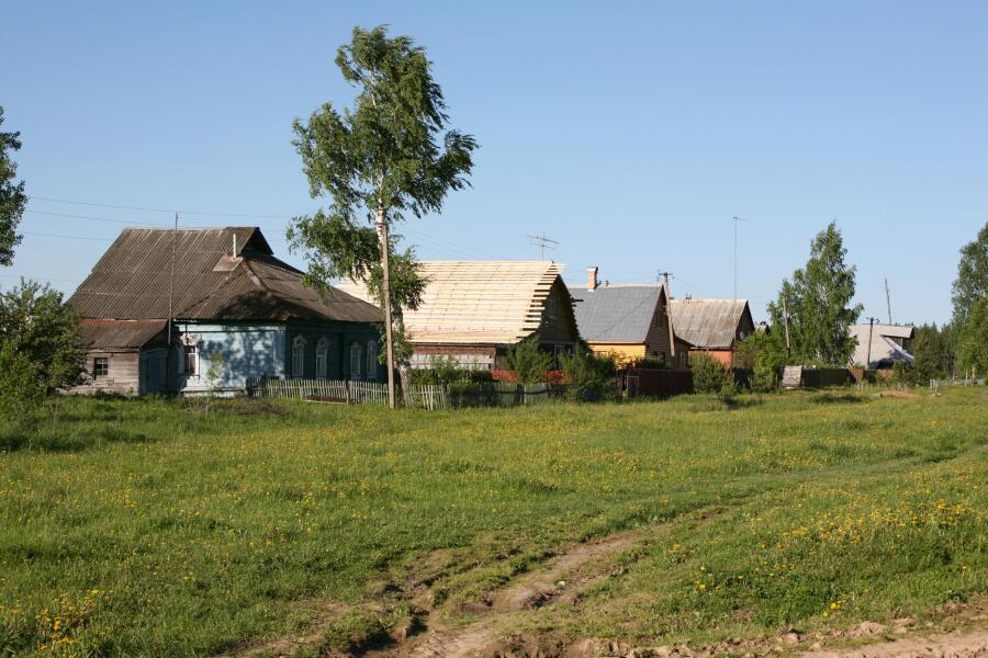 Как мы раньше отдыхали в деревне у бабушки?
