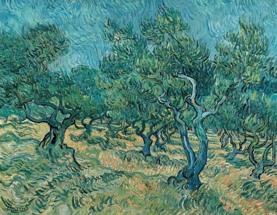 Винсент Ван Гог, «Оливковые деревья», 1889 г.