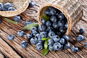 Почему чернику называют чудо-ягодой и суперпродуктом?