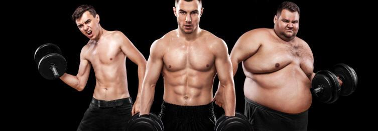 Какими мы бываем? Три типа телосложения