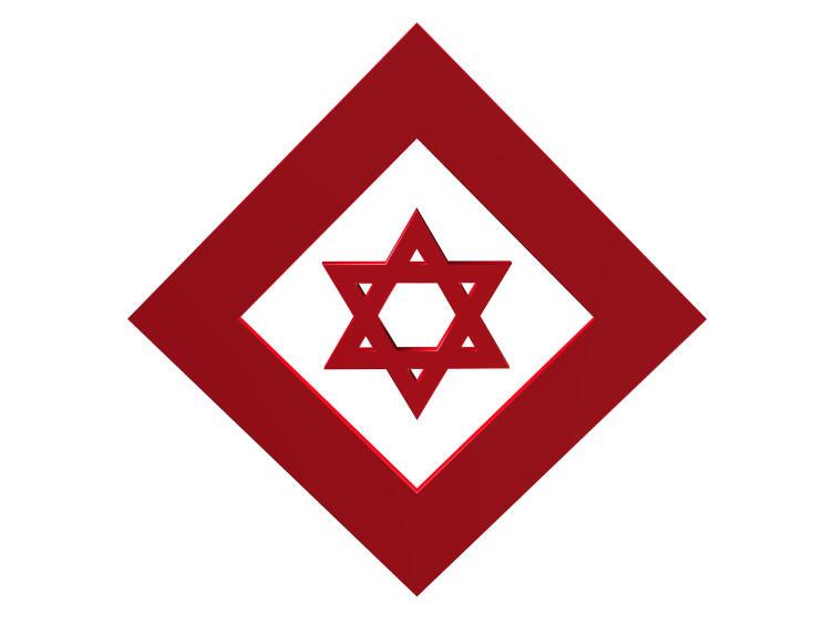 Красный щит Давида