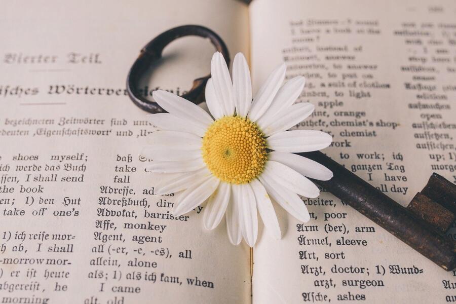 Как легко и бесплатно выучить английский язык?