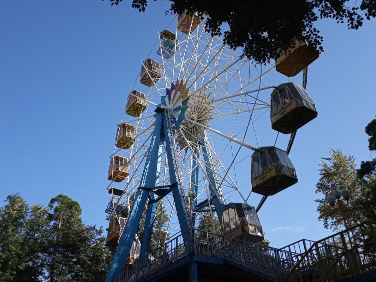 В парке Раменского