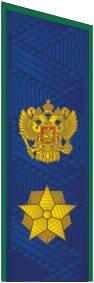 Погон Генерального прокурора РФ, действительного государственного советника юстиции
