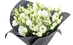 Кому и по какому поводу можно дарить цветы? Оперативная доставка цветов курьером