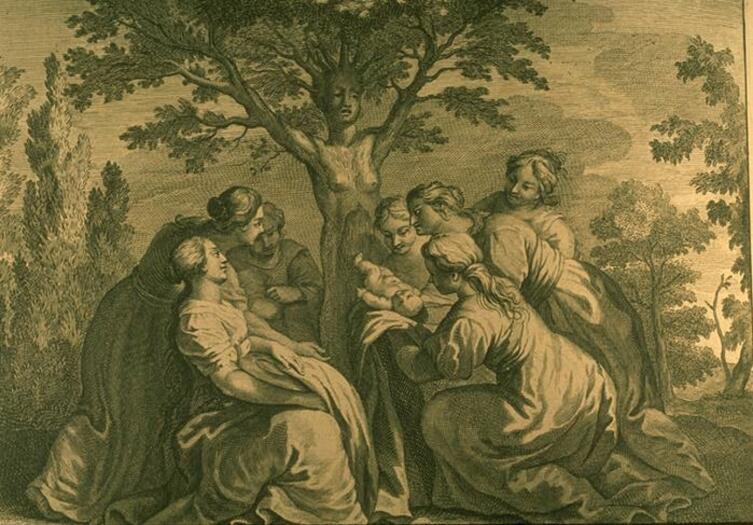 Бернар Пикар, иллюстрация к «Метаморфозам» Овидия, «Рождение Адониса»