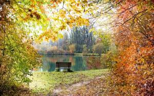 Какие праздники отмечают в октябре?