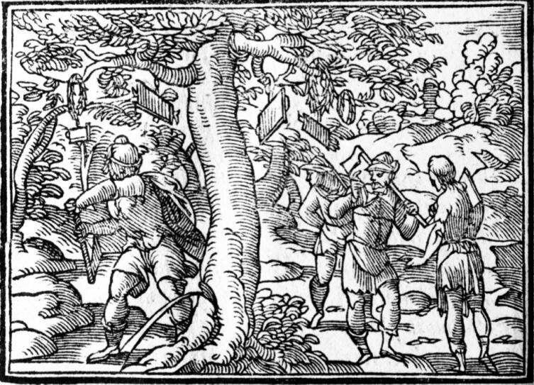Эрисихтон рубит дерево, в книге «Овидий. Метаморфозы», Лейпциг, 1582, библиотека института Варбурга, Лондон, Англия. На священном дереве видны подвешенные таблички с пожеланиями, венки. Из надрубленного ствола льется кровь