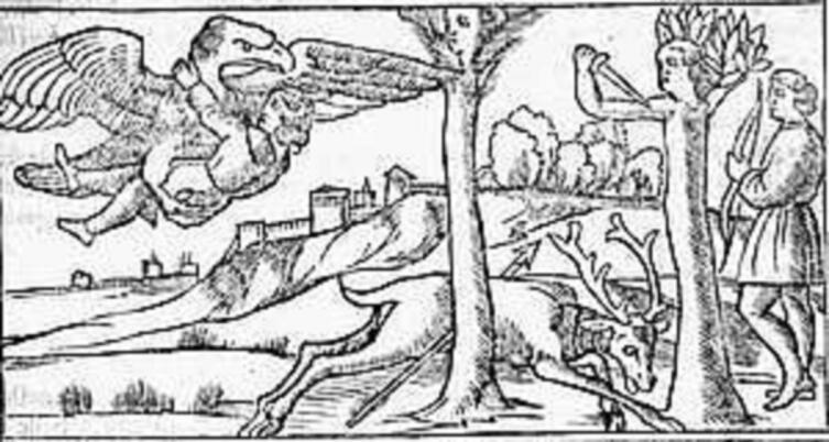 Николо из Агостини, иллюстрация к «Метаморфозам» Овидия, «Зевс, Ганимед, Аполлон, Кипарис», 1522 г.