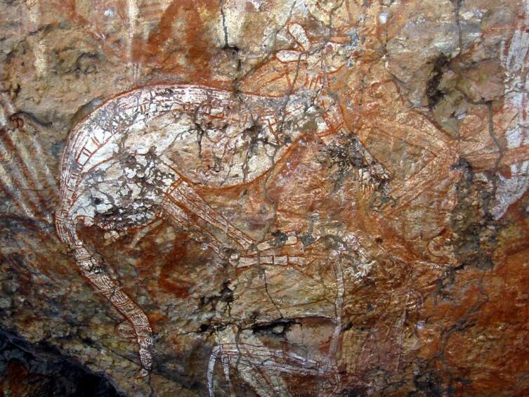Наскальный рисунок кенгуру в «рентгеновском» стиле