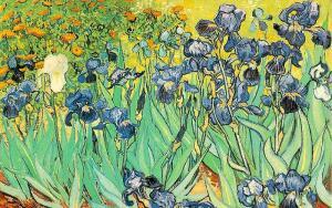 Ван Гог, природа и космос. Что их объединяет?
