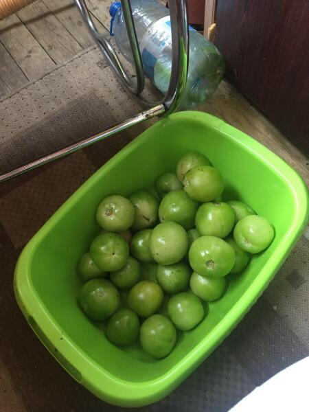 Что приготовить из зелёных помидоров?