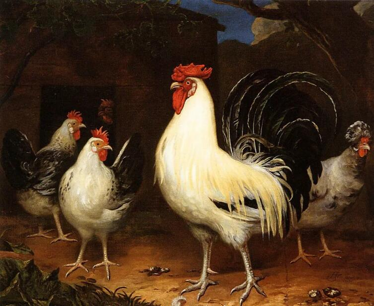 Хендрик Тен Увер, «Петух с цыплятами»