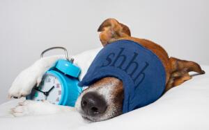 6 советов, которые помогут улучшить сон