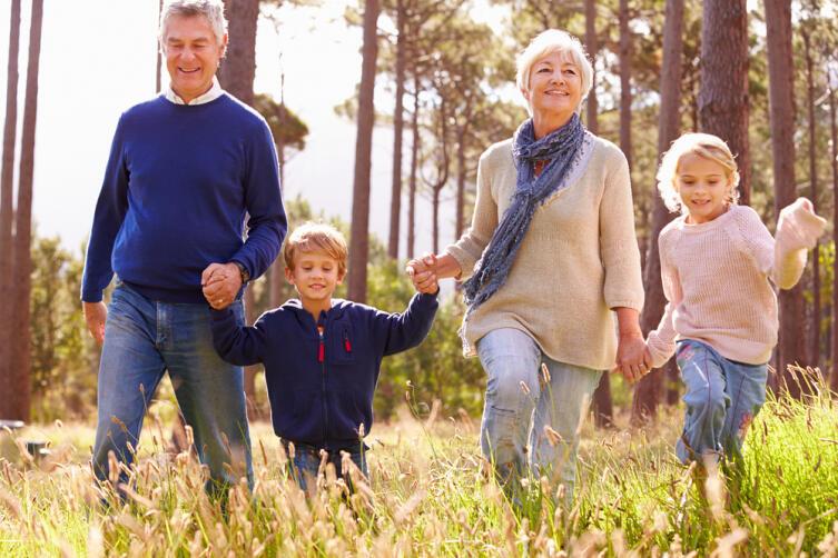 Как бабушке организовать полезную прогулку с внуками?
