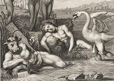 Бернар Пикар, иллюстрация к «Метаморфозам» Овидия, «Кикн, превращение в лебедя», фрагмент «Лебедь», 1733 г.