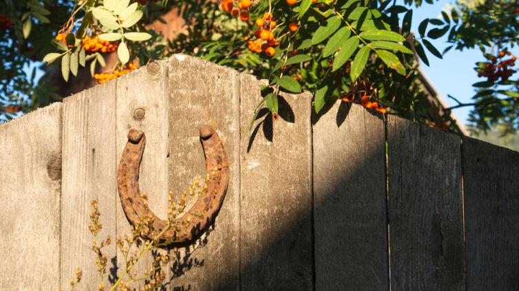 Как подкова стала символом счастья?