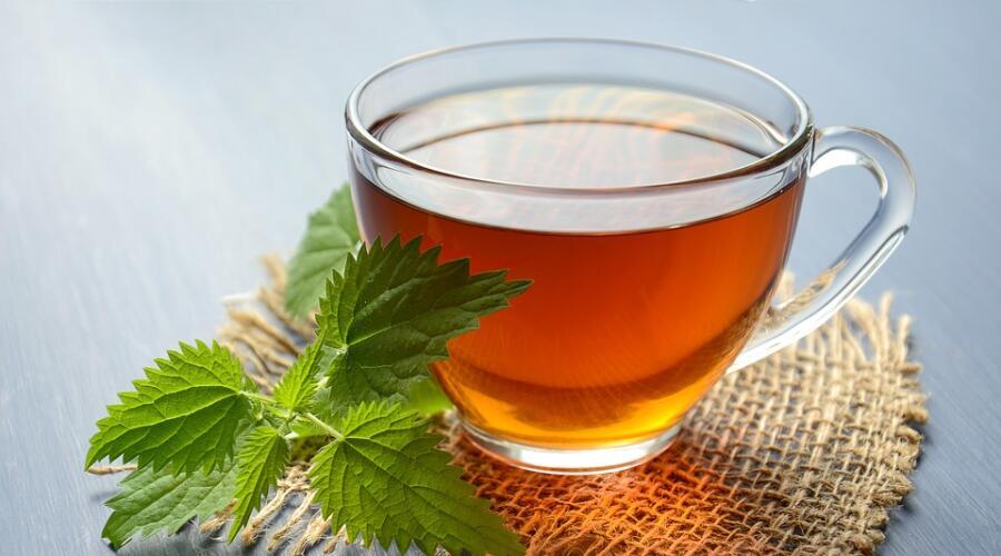 Народная медицина: что и как можно лечить крапивой?