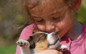 Как я в детстве завел себе собаку?