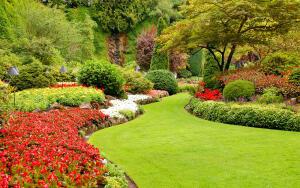 Ландшафтный дизайн. Какие кустарники осенью самые эффектные?