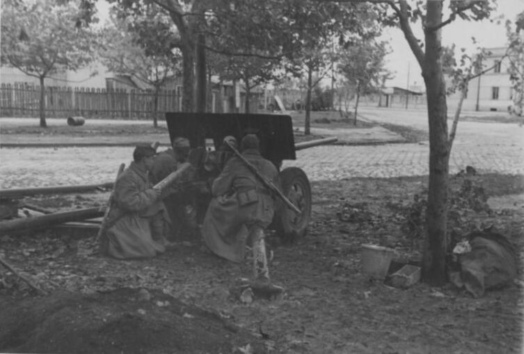 Советские артиллеристы у 57-мм пушки ЗиС-2 на улице Белграда