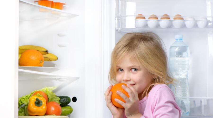 Как люди раньше обходились без холодильников?