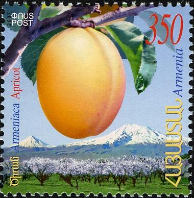 Почтовая марка Армении с изображением Prunus armeniaca