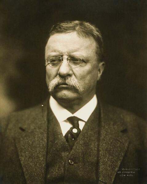 Теодор Рузвельт, 1915 г.