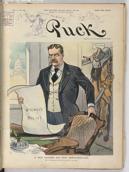 Карикатура, посвящённая вступлению Рузвельта в должность президента