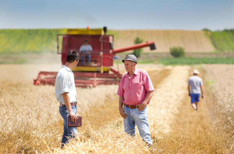 Что такое МТС — колхозный пережиток или элемент современного агрокомплекса?
