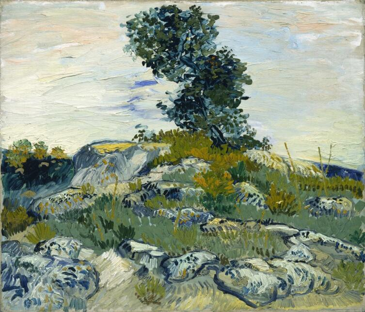 Винсент Ван Гог, «Дуб на скалах», 1888 г.