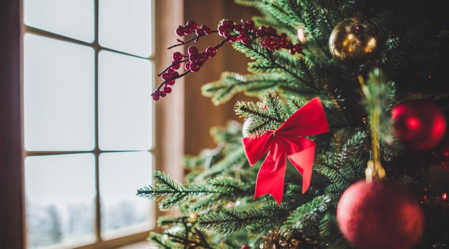Чем может быть опасна новогодняя елка для человека?