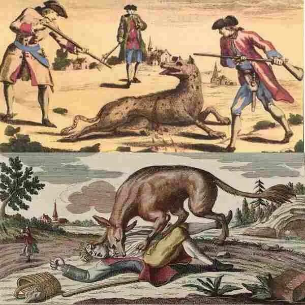 Жеводанский зверь за время своих бесчинств убил около 60 человек, среди которых было много детей