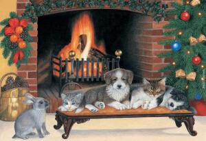 Fireside Friends