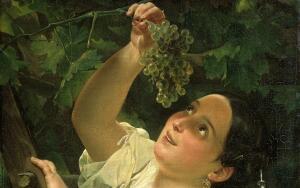 Как вырастить виноград из саженца?