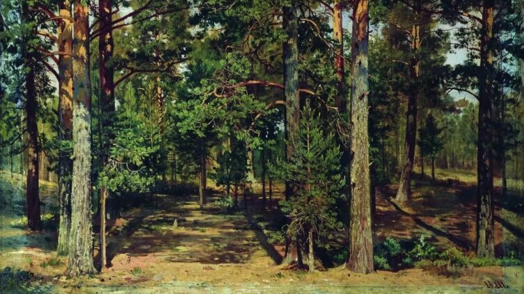 И. И. Шишкин, «Сосновый лес»