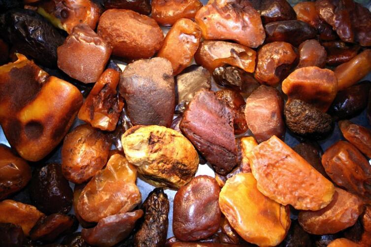 Палитра ископаемого янтаря