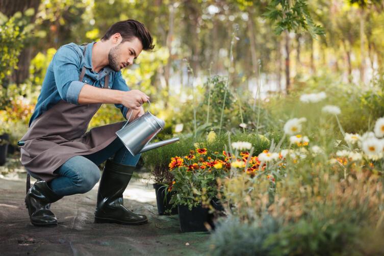 Кто вредит растениям в саду?