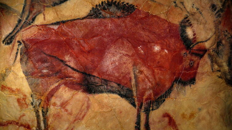 Зубр на стене пещеры Альтамира