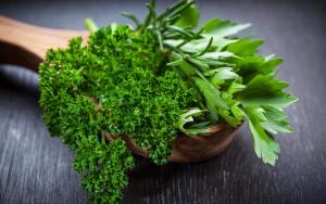 В чем секрет огородной петрушки?