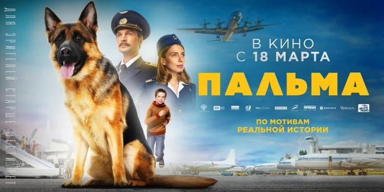 Постер к к/ф «Пальма» 2021 г.