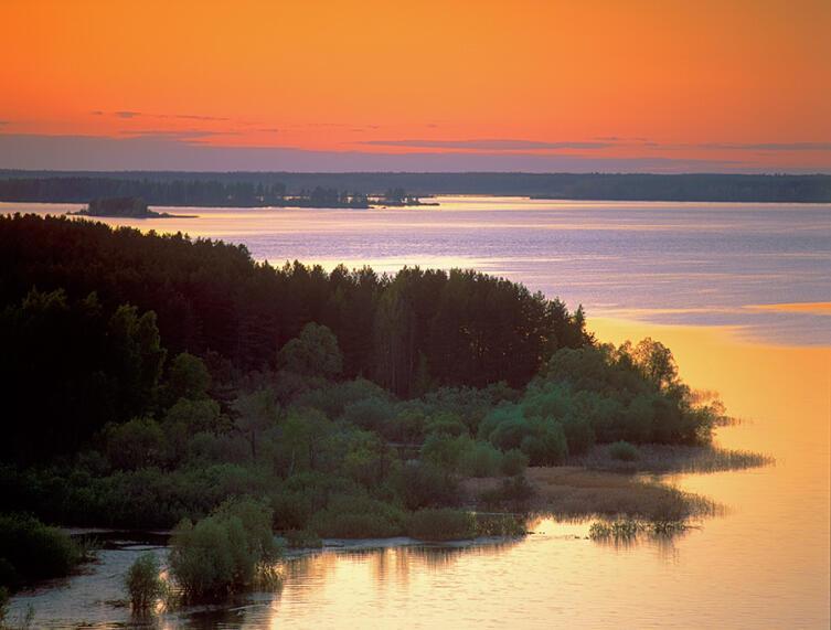 Дарвинский заповедник. Вечер на Рыбинском море