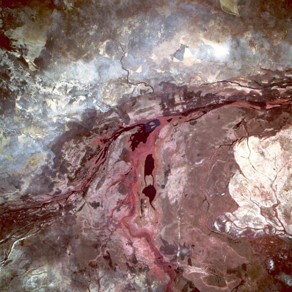 Вид на болото из космоса, май 1993 г.
