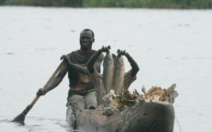 Природа Африки: чем уникально болото Судд?