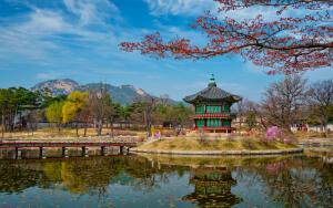 Путешествие в Южную Корею. Чем пахнет Сеул?